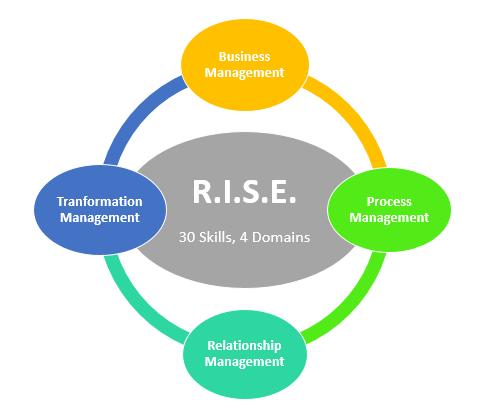 rise-domains